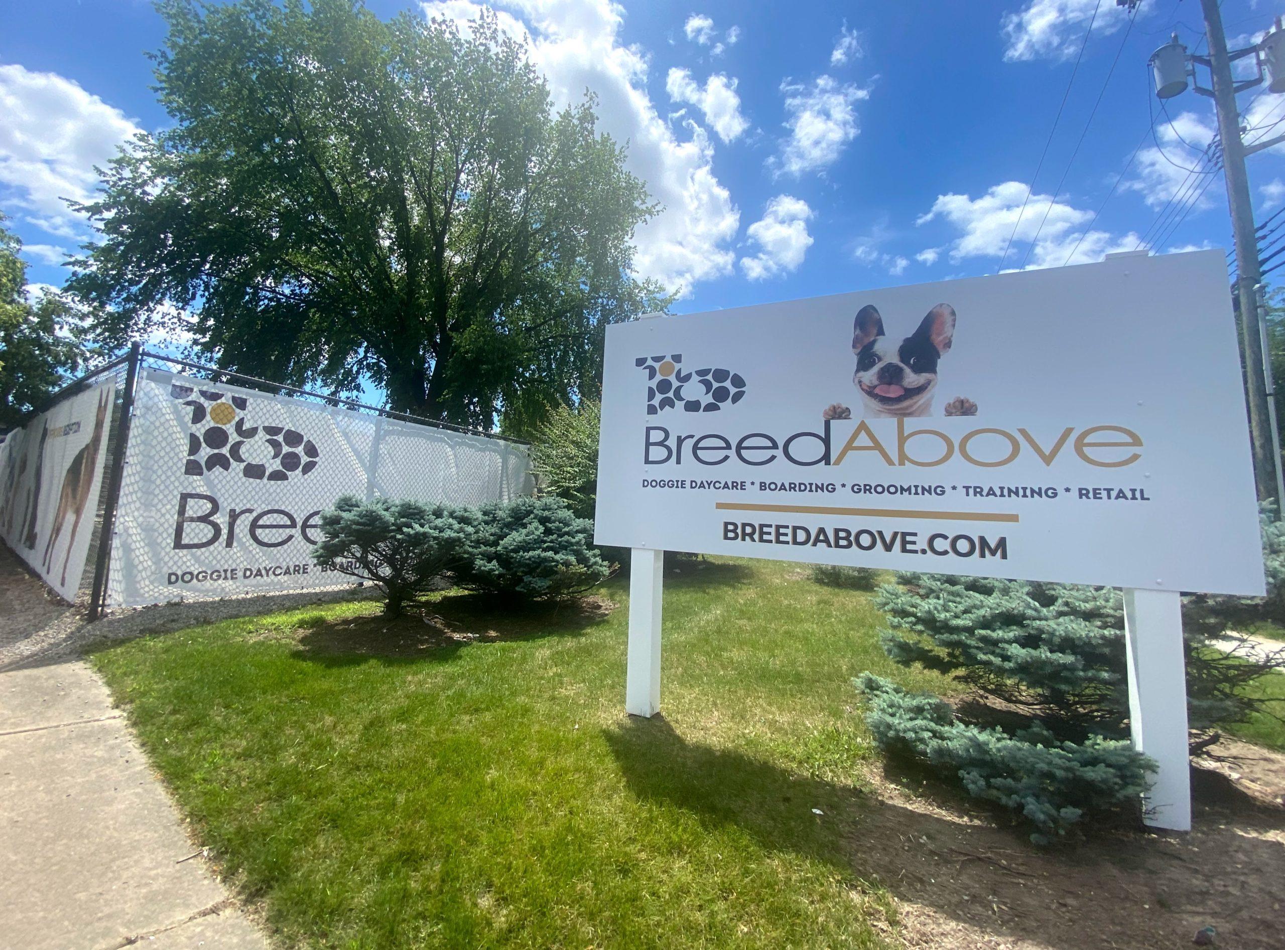 local pet services